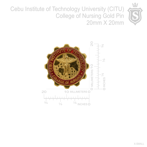 Cebu Institute of Technology University (CITU) College of Nursing Pin