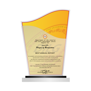 "DILG Best Annual Report Plaque 8""H"