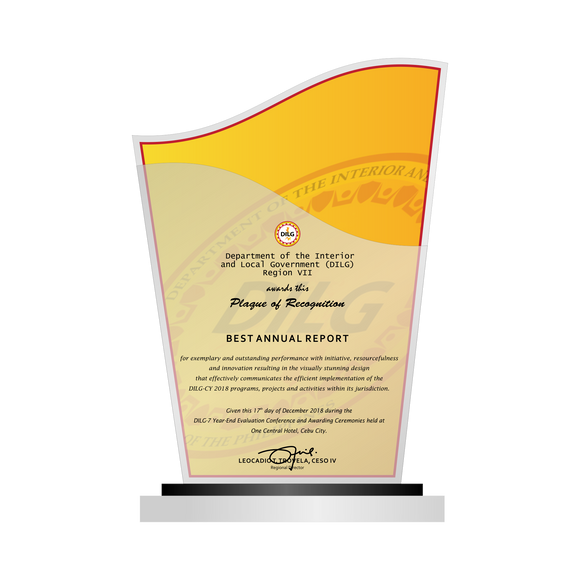 DILG Best Annual Report Plaque 8