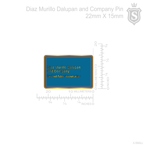 Diaz,Murillo,Dalupan and Company Pin