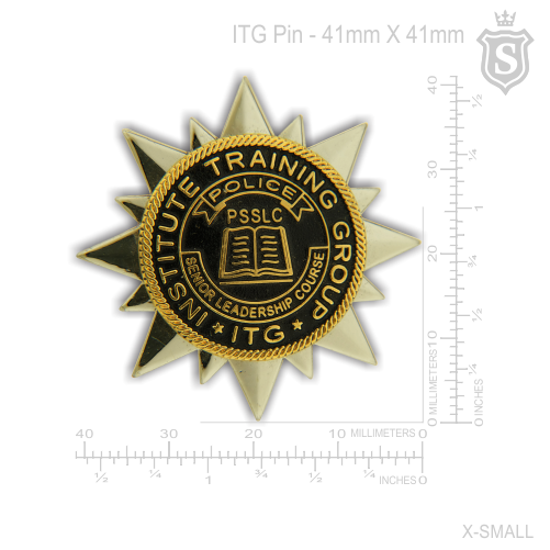 Institute Training Group Pin