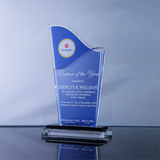 Suzuki Partner of the Year Award 7.75 inch