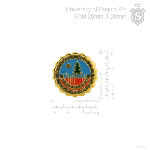 University of Baguio Pin Gold 20mm