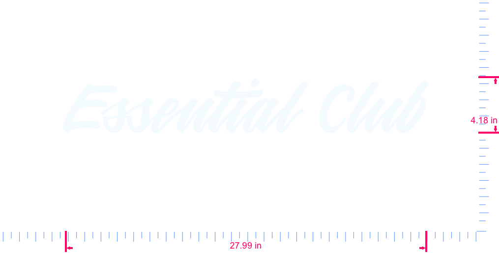 Text Essential Club Vinyl custom lettering decall/4.18 x 27.99 in/ White /