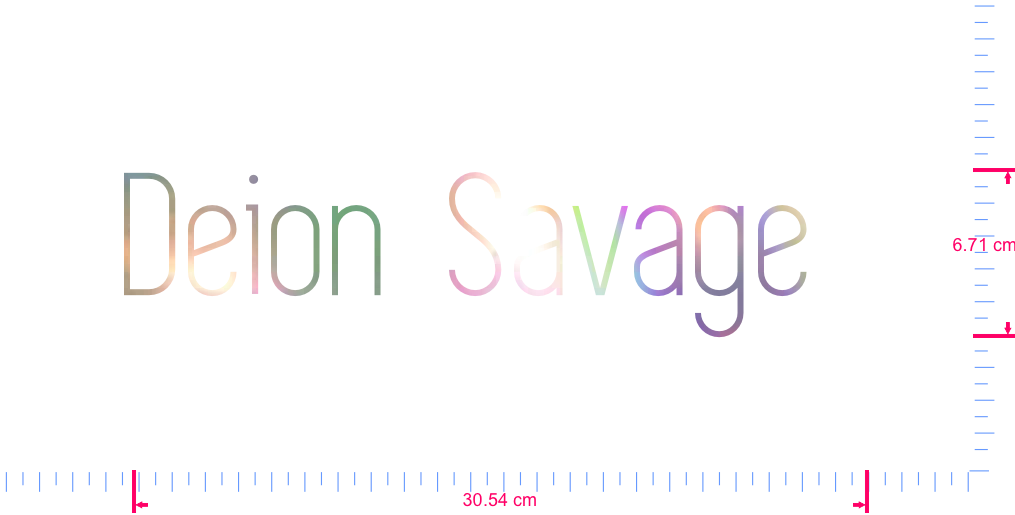 Text Deion  Savage   Vinyl custom lettering decal/6.71 x 30.54 cm/ OilSlick Chrome /