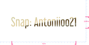 Text Snap: Antoniioo21 Vinyl custom lettering decal/2.09 x 12 in/ Gold Chrome /