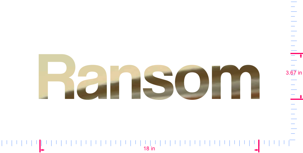Text Ransom Vinyl custom lettering decal/3.67 x 18 in/ Gold Chrome /