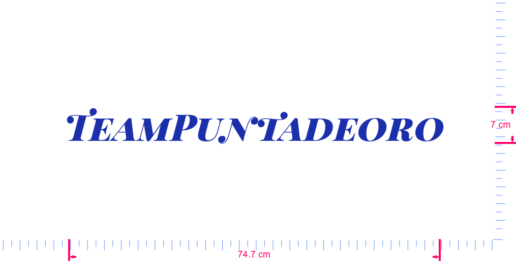 Text TeamPuntadeoro Vinyl custom lettering decal/7 x 74.7 cm/ Brilliant Blue /