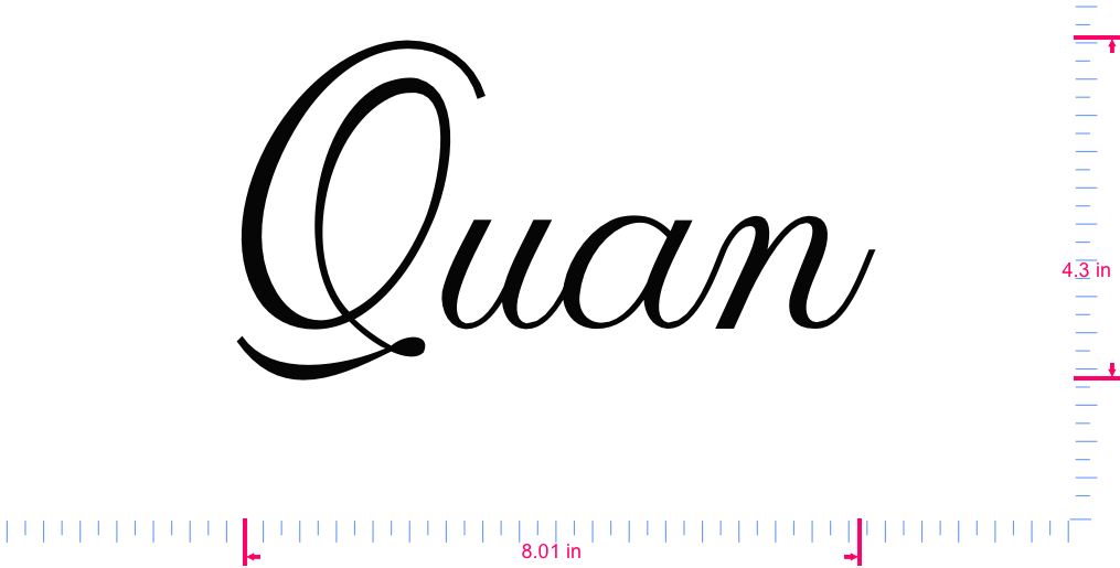 Text Quan Vinyl custom lettering decal/4.3 x 8.01 in/ Black /
