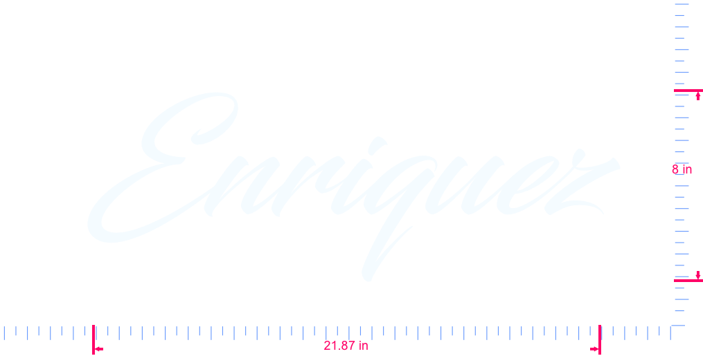 Text Enriquez Vinyl custom lettering decal/8 x 21.87 in/ White /