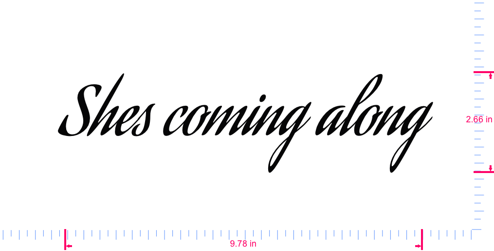 Text Shes coming along Vinyl custom lettering decal/2.66 x 9.78 in/ Black /