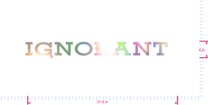Text Ignorant  Vinyl custom lettering decal/4 x 37.4 in/ OilSlick Chrome /