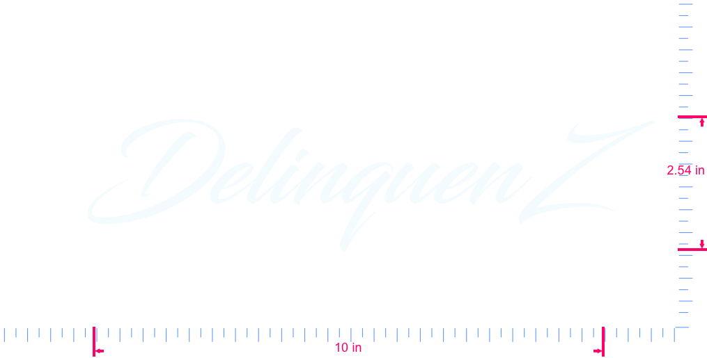 Text DelinquenZ Vinyl custom lettering decal/2.54 x 10 in/ White /