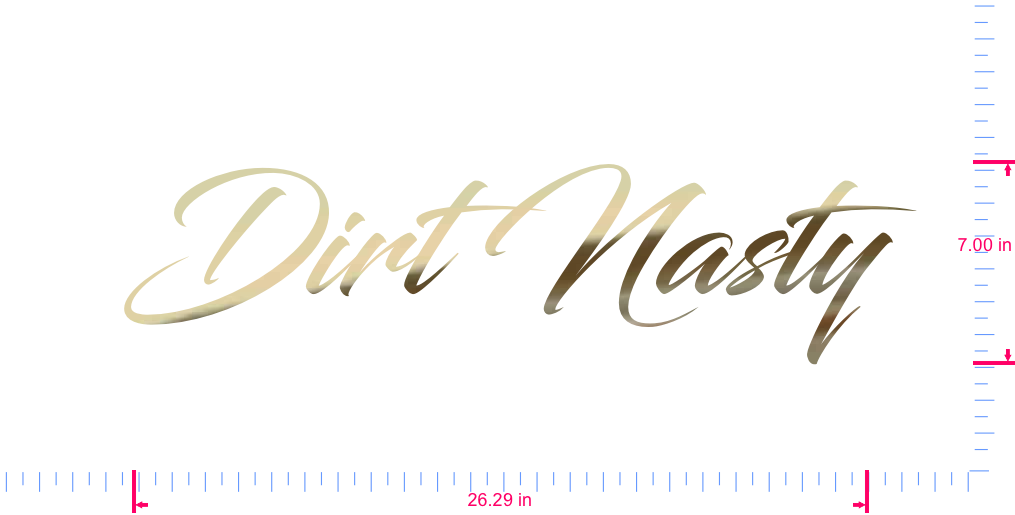 Text Dirt Nasty Vinyl custom lettering decal/7.00 x 26.29 in/ Gold Chrome /