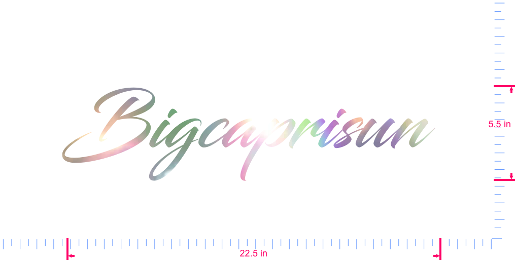 Text Bigcaprisun  Vinyl custom lettering decal/5.5 x 22.5 in/ OilSlick Chrome /