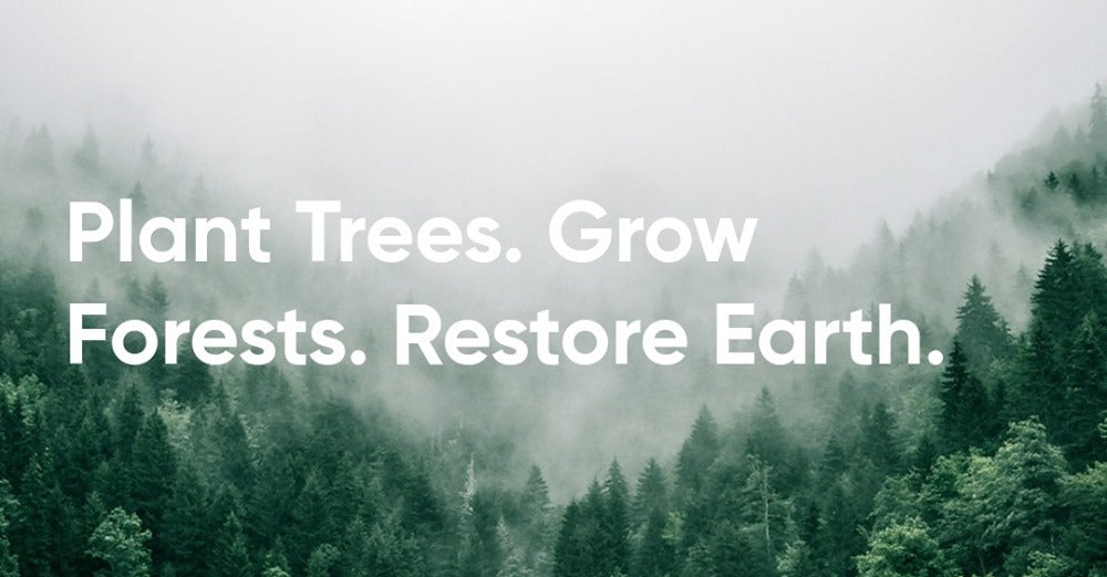 Plant a tree in Europe Life Terra