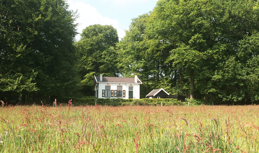 't Witte Huis By Mölle