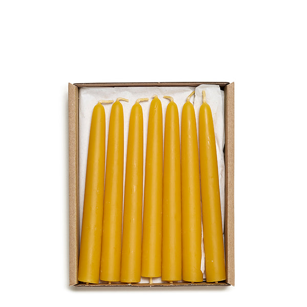 Christmas tree beeswax candles