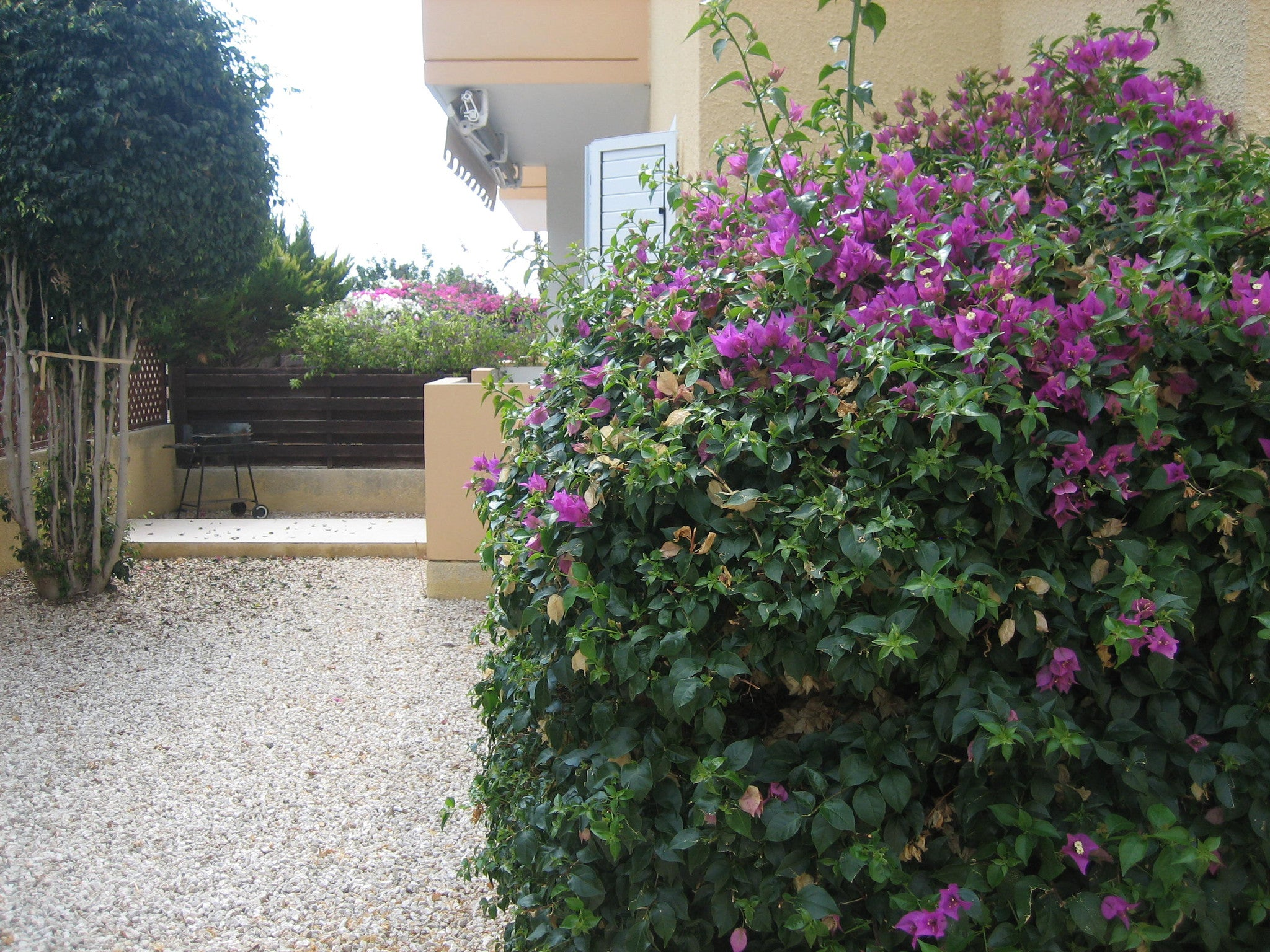 Spacious & Affordable 2 Bed Apartment with Sea views Paphos Cyprus