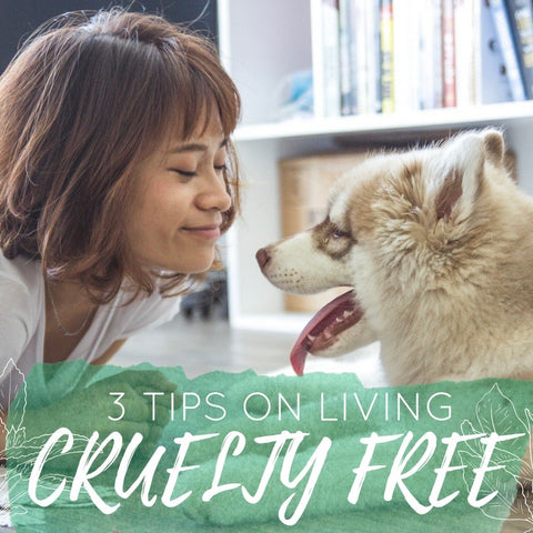 3 Tips on Living a Cruelty-Free Lifestyle