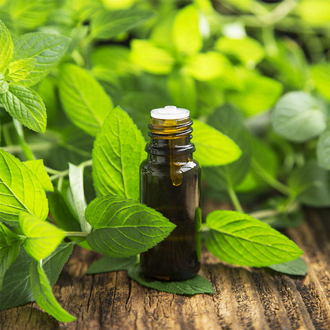 Kick Spring Allergies to the Curb with Essential Oils