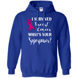 I Survived Breast Cancer! Hoodie
