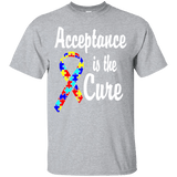 Acceptance is the Cure - Autism Awareness T-Shirt
