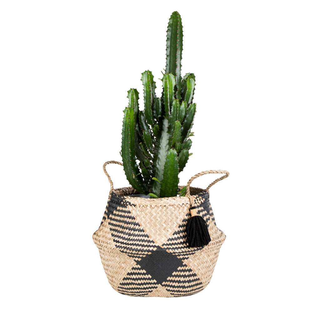Seagrass Tribal Pom Pom Storage Basket