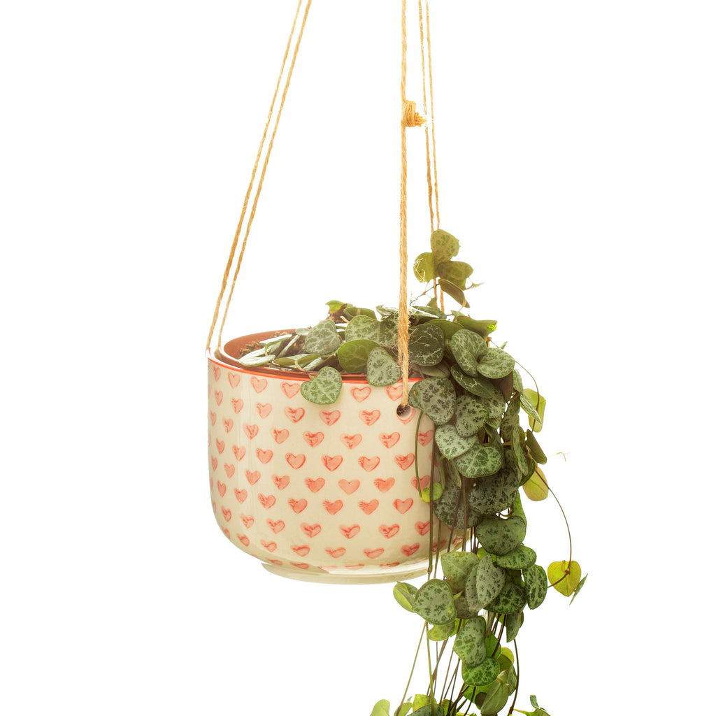 Love Heart Hanging Planter