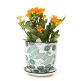 liberte green flower pot and saucer