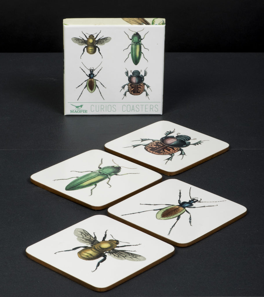 Curios Coasters Insects (Set Of 4)
