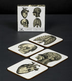 Curios Coasters Anatomy (Set Of 4)