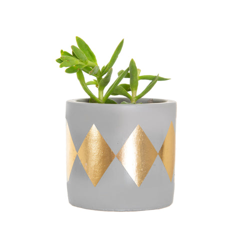 Geo Terracotta Tribal Planter