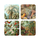 Haeckel  Nature Set Of 4 Coasters