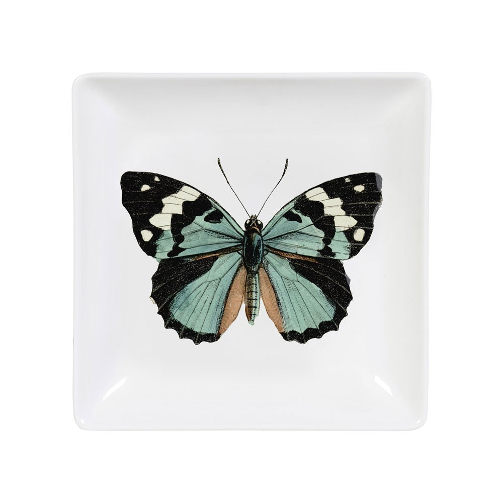 Curios Butterfly Trinket Tray
