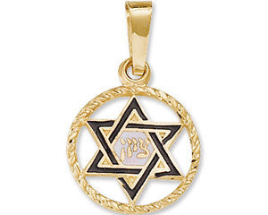 Star of David Pendant 14K Yellow Gold
