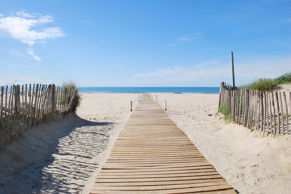 "alt=""things to do at the beach"""