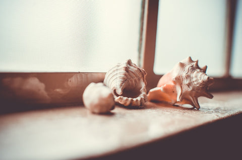 "alt=""day out at the beach"""