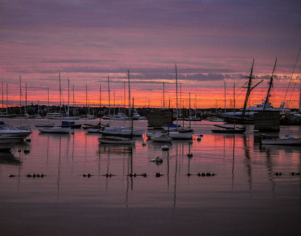 Nantucket Harbor: Boats and Sunrise