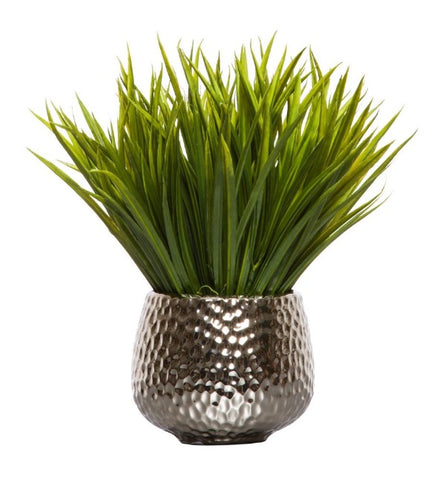 Grass in Silver Dimple Pot - Small