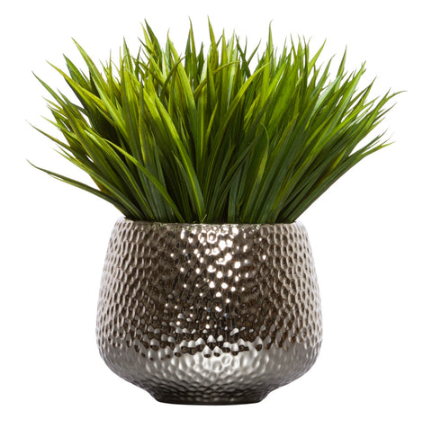 Grass in Large Silver Dimple Pot