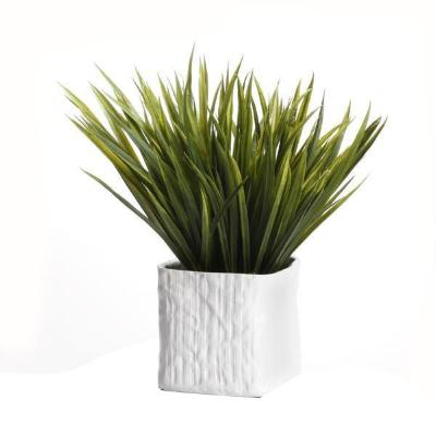 Grass/White Ceramic - Small