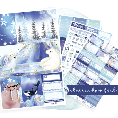 Arctic // CLASSIC HAPPY PLANNER / Sticker Kit / FOIL