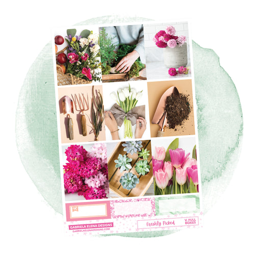 Freshly Picked / Photo Series // a la carte / Sticker Kit / Full Boxes / FOIL