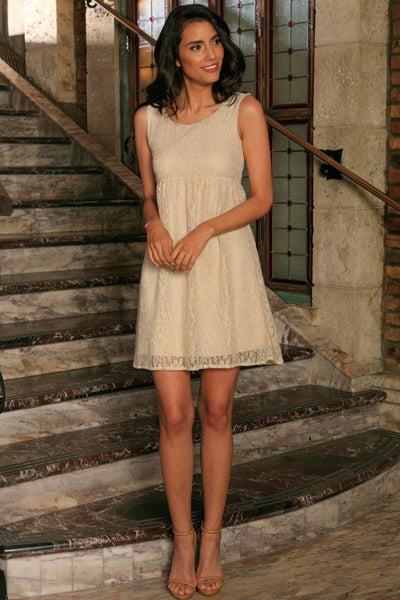 Beige Stretchy Lace Empire Waist Sleeveless Cute Spring Dress - Women