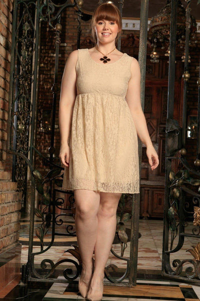 Beige Stretchy Lace Empire Waist Sleeveless Sexy Dress - Women Plus Size