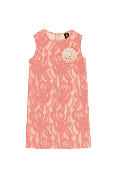 Dusty Pink Lace Cute Beautiful Princess Party Shift Dress - Girls