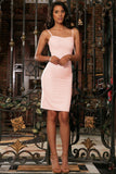 Pink Blush Sweetheart Neckline Bodycon Fancy Party Mini Dress - Women - Pineapple Clothing