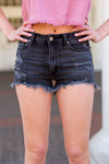 Festival Fresh Denim Shorts - Washed Black