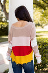 Distressed V-Neck Sweater- Multicolor